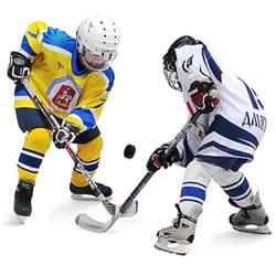 Арена Мытищи - Хоккей